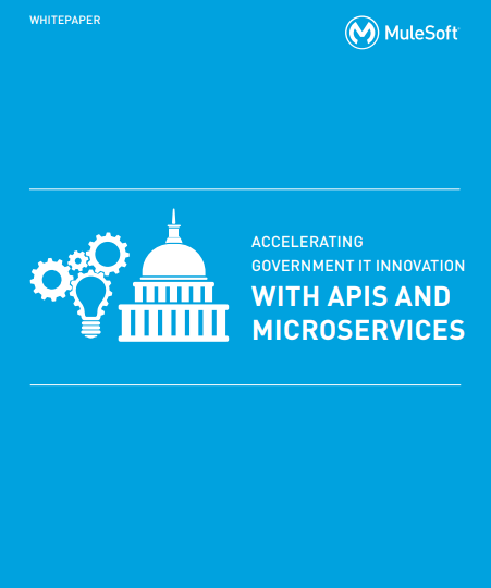 Accelerating Government IT Innovation