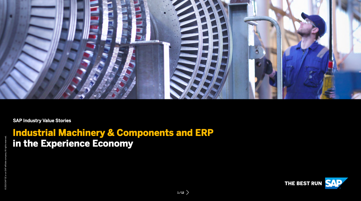 Industrial Machinery & Components and ERP in the Experience Economy