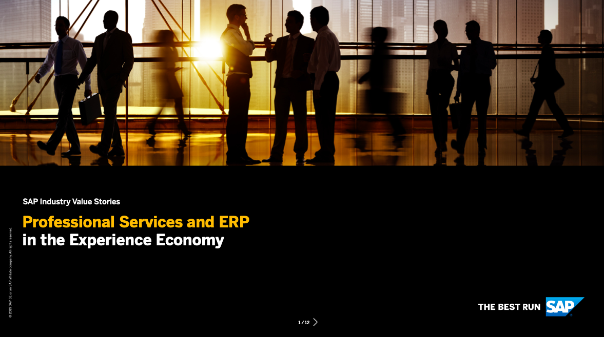 Professional Services and ERP in the Experience Economy