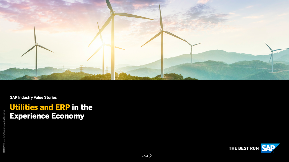 Utilities and ERP in the Experience Economy