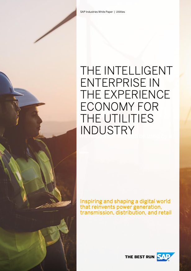 The intelligent enterprise in the experience economy for the utilities industry